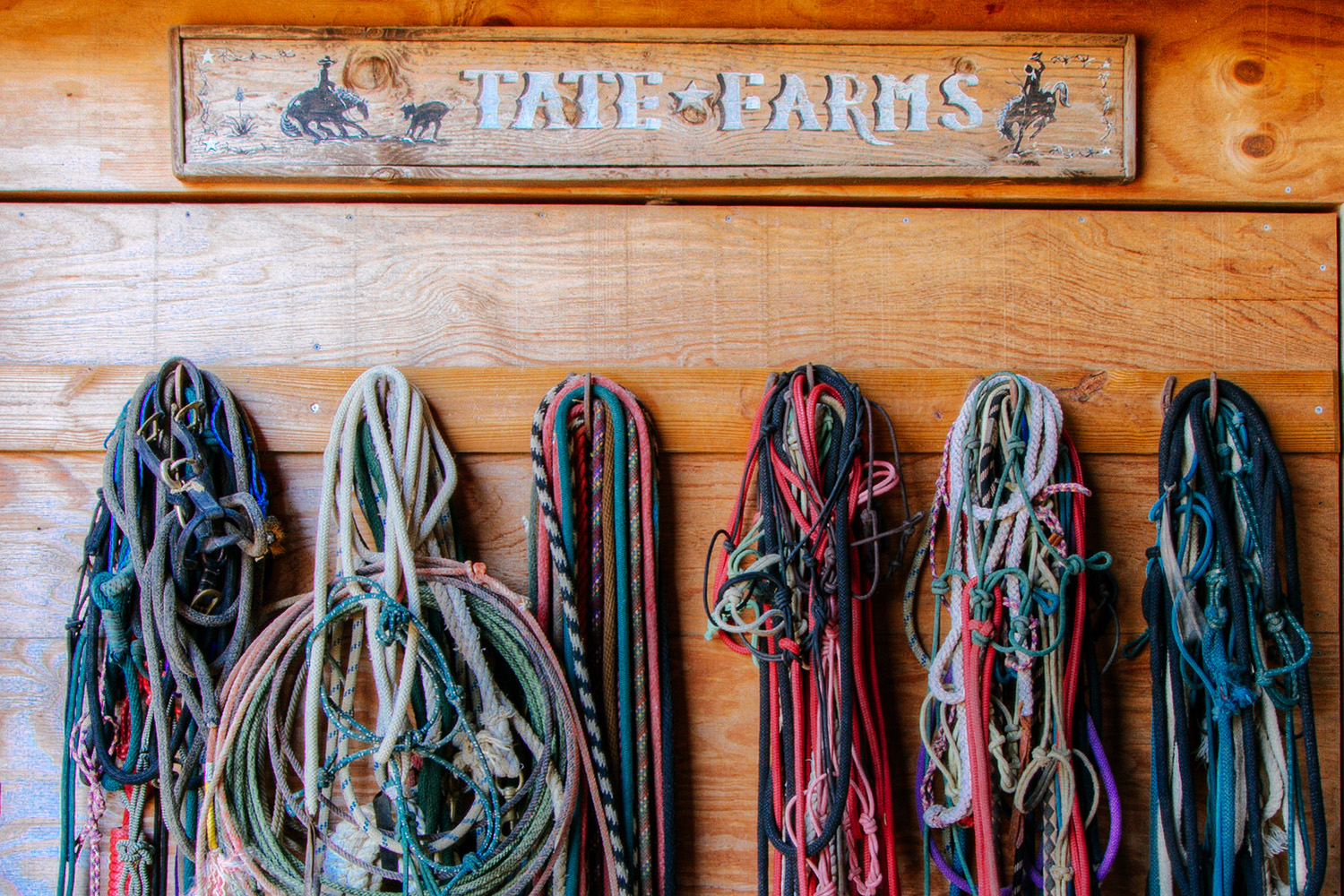 A working ranch, horse leads are abundant at Summerfield.